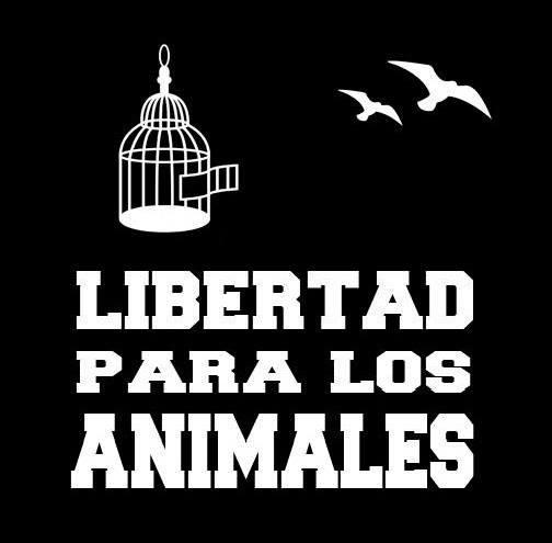 ¡Derechos Animales ya! - Libertad para los animales