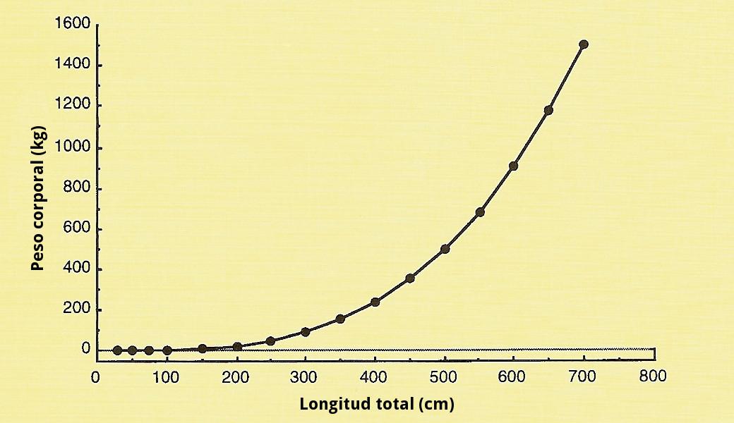 Crecimiento cocodrilos gráfico 1 (con letras)