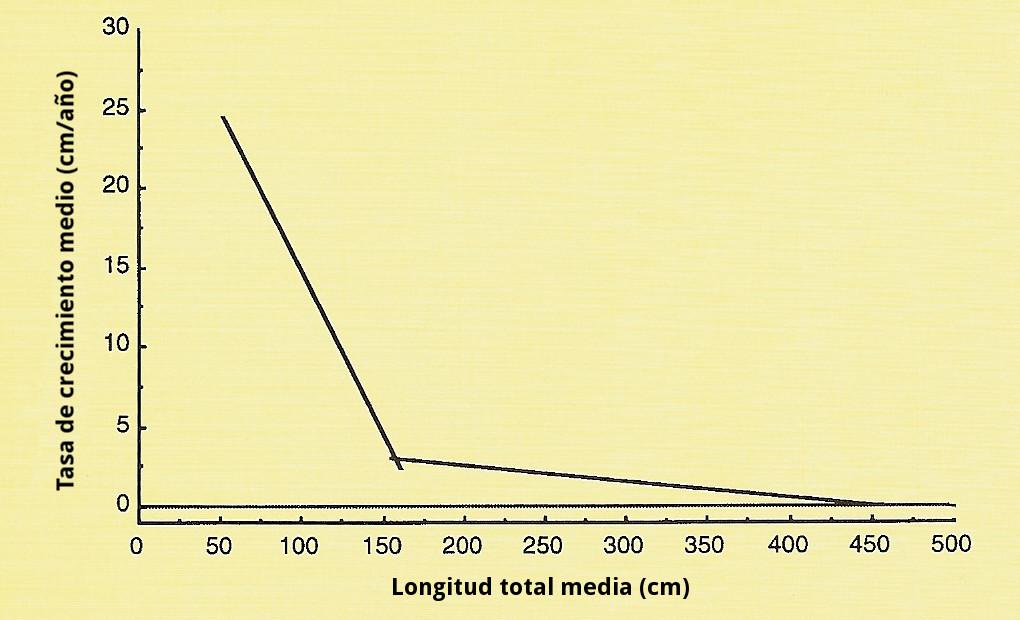 Crecimiento cocodrilos gráfico 2 (con letras)