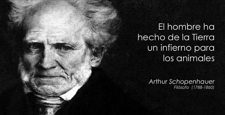 ¡Derechos Animales ya! - Cita de Arthur Schopenhauer - El hombre ha hecho de la Tierra un infierno para los animales - La explotación animal es inmoral