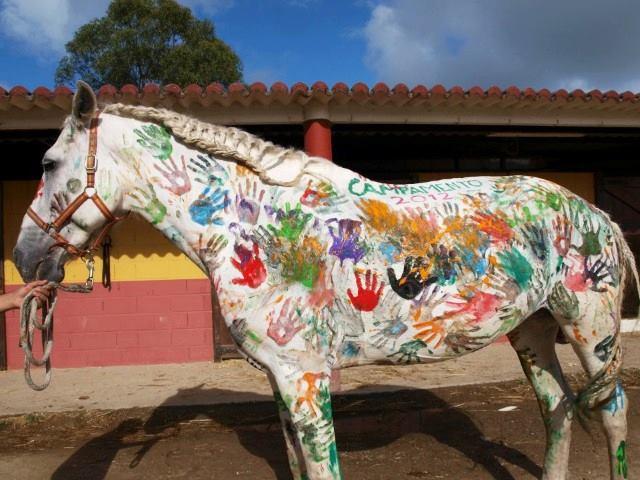 ¡Derechos Animales ya! - Caballo pintado por niños en una granja escuela