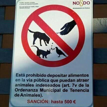 Señal prohibido alimentar animales indeseados en Sevilla - Los humanos sienten desprecio por la vida - Principio de Hanlon - Antropocentrismo