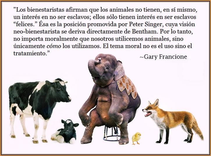 Cita Gary Francione sobre neobienestaristas - Peter Singer y la perversión del activismo animalista
