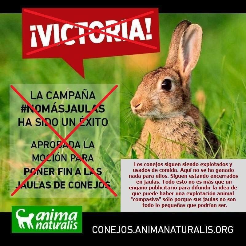 Propaganda Anima Naturalis no maás jaulas de conejos