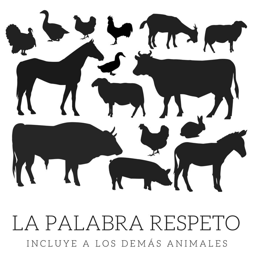 ¡Derechos Animales ya! - La palabra respeto incluye a los demás animales