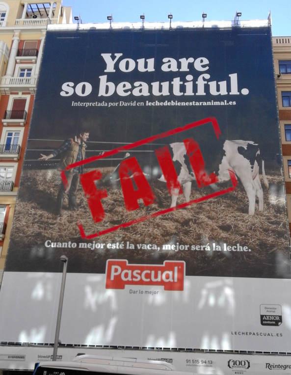 ¡Derechos Animales ya Anuncio de Leche Pascual you are so beautiful