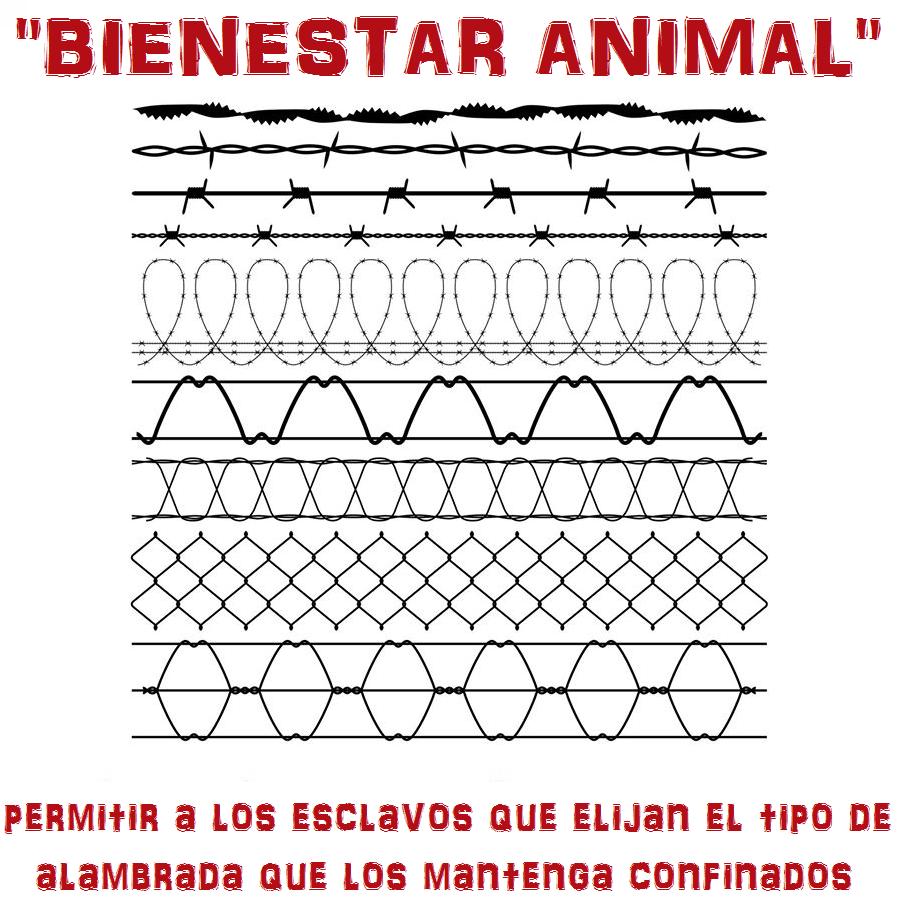 ¡Derechos Animales ya! - El bienestar animal es como permitirles elegir a los esclavos el tipo de alambrada que los confina