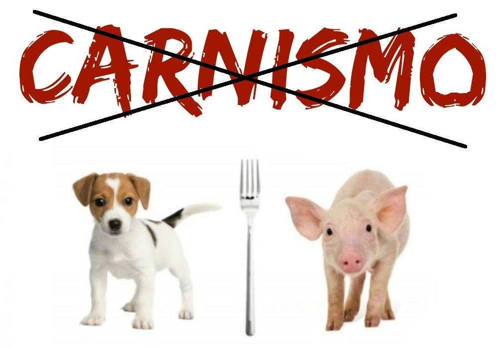 ¡Derechos-Animales-ya-El-concepto-de-carnismo-es-erróneo